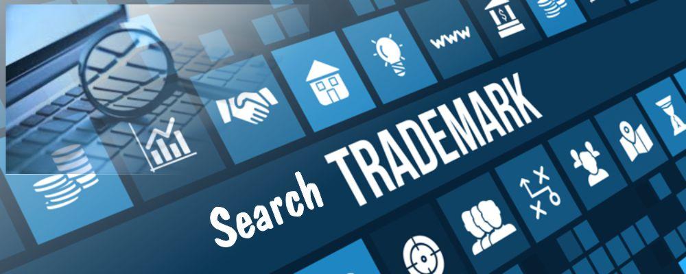 Search trademark