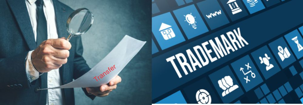 Transfer the trademark application