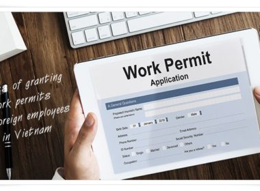 Process of granting work permits for foreign employees in VN